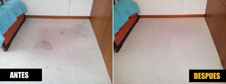 lavado de alfombras bogota